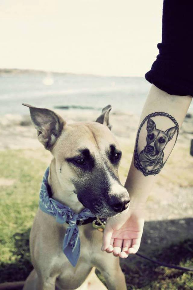 perro tattoo